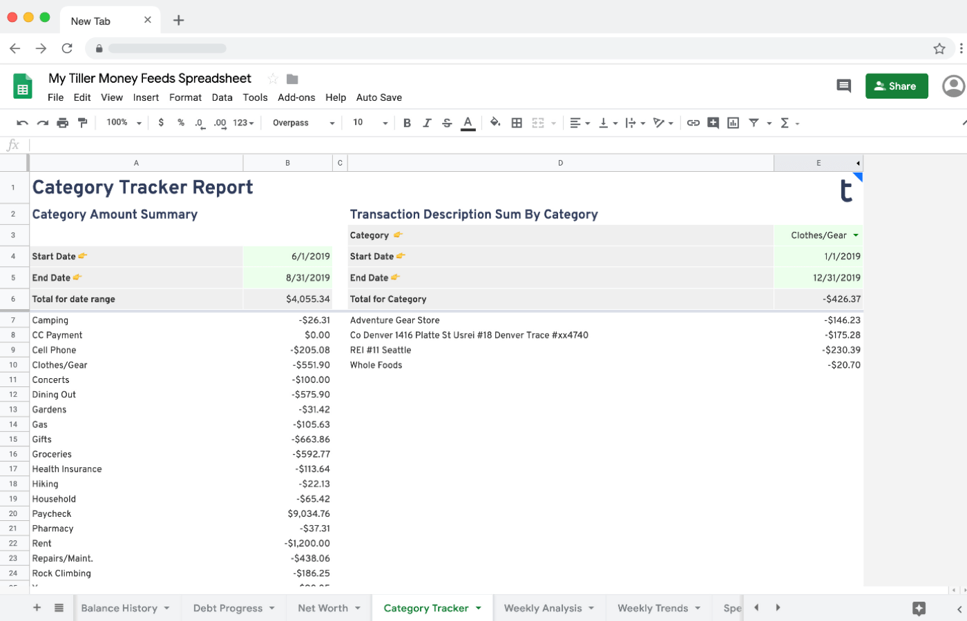 Category Tracker Report from Tiller Labs